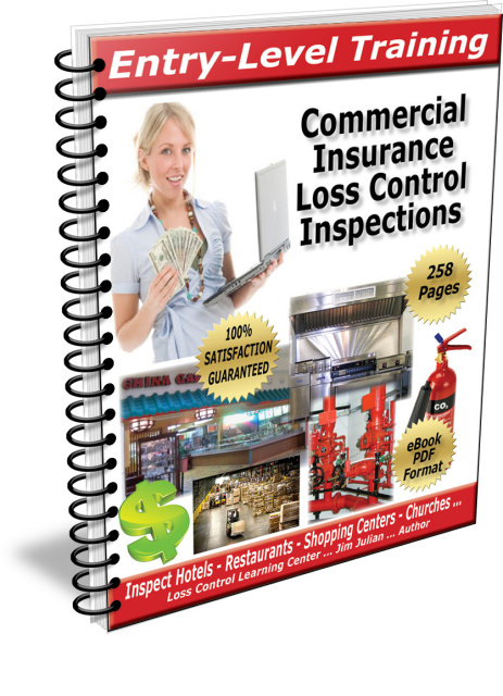 Entry-Level Commercial Insurance Loss Control - Training Manual - PDF Download